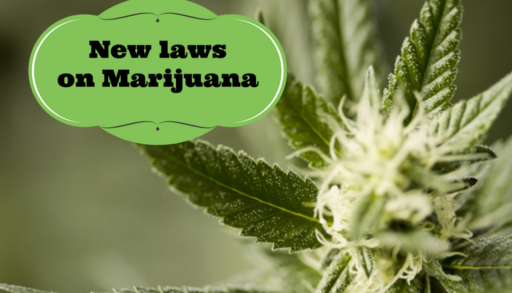 New laws on Marijuana
