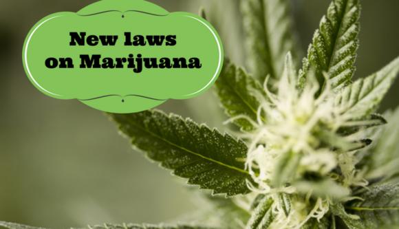 New laws on Marijuana